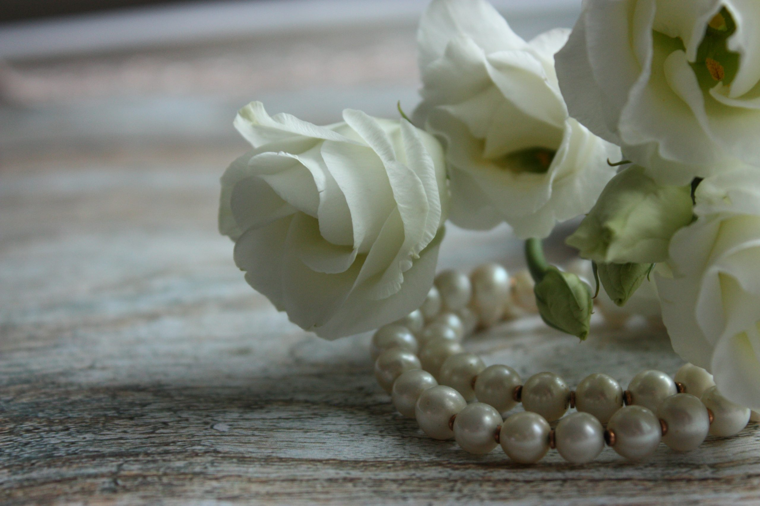 pearls and white roses